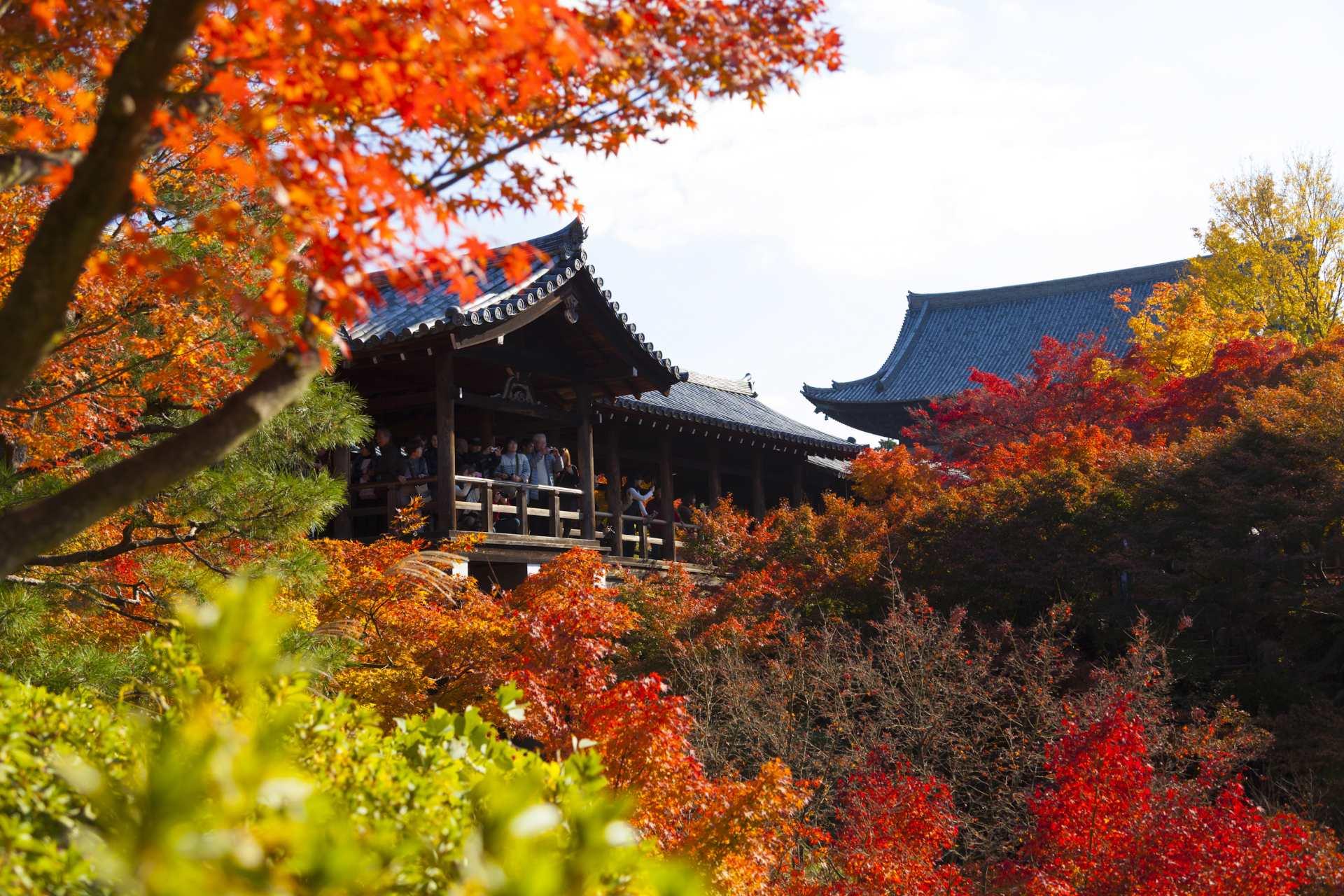 四季如画的日本