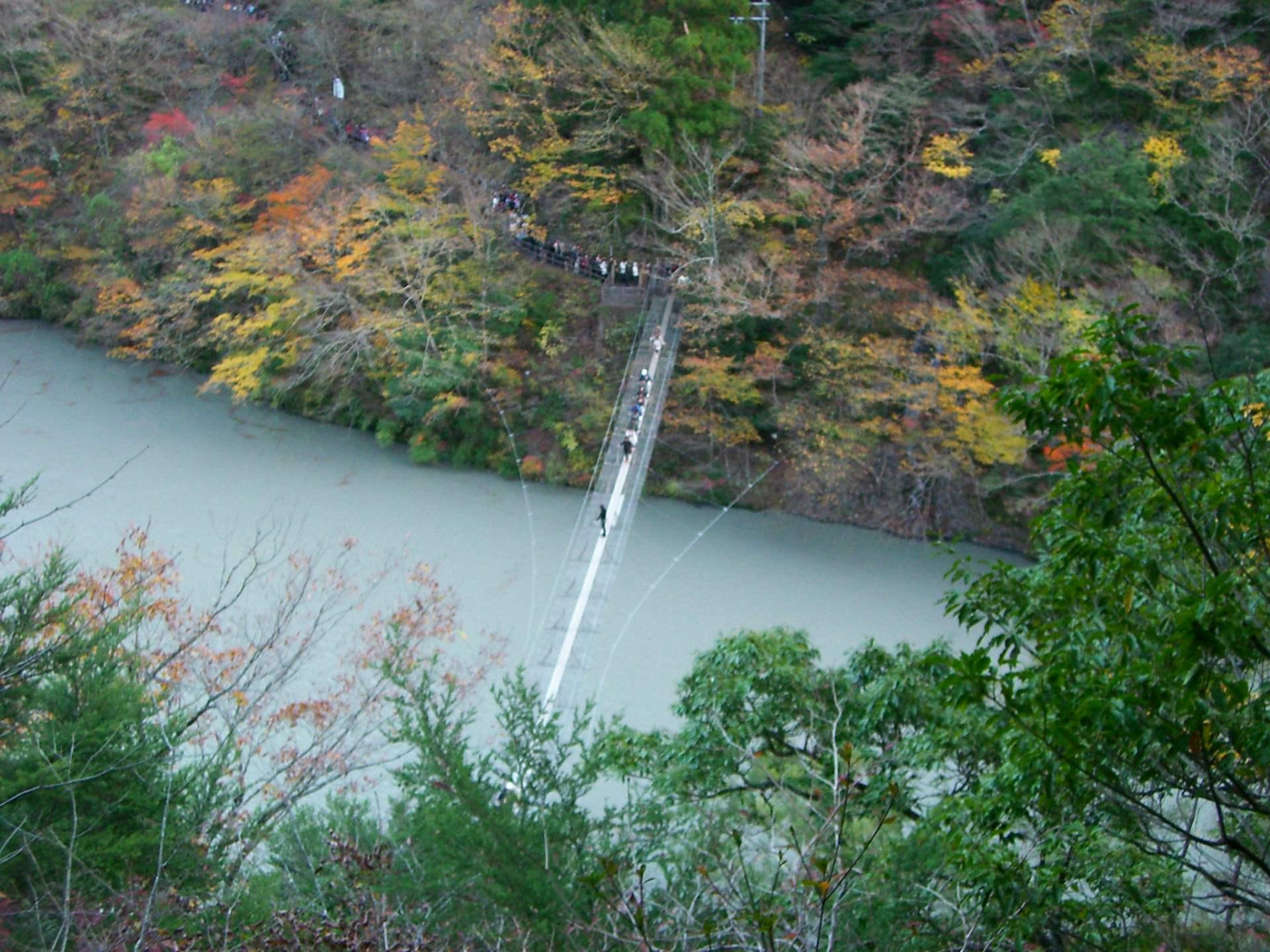 「夢之吊橋」