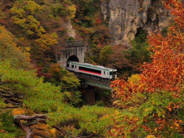 火車、山洞、鐵橋和紅葉共同編織出的美景