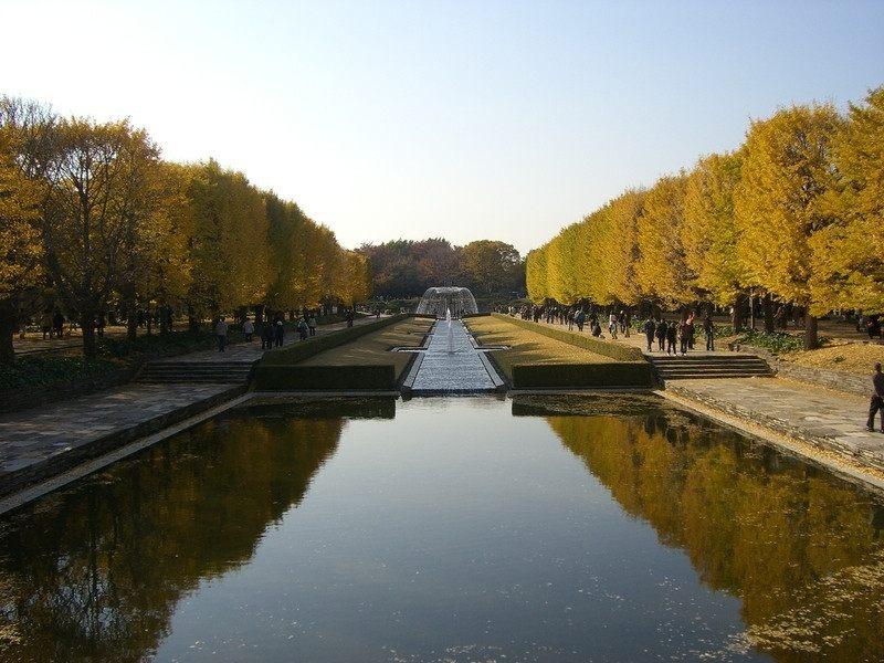 「カナール(運河canal)」