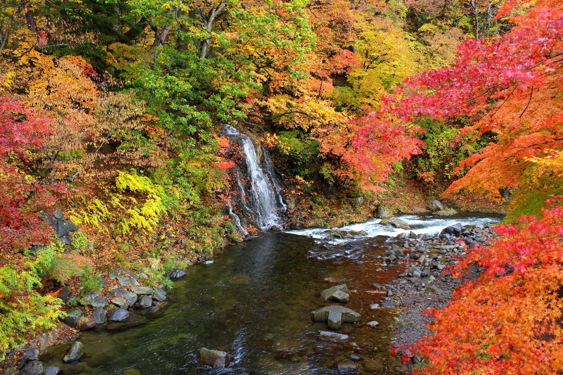 中野紅葉山 不動之滝與楓葉景緻