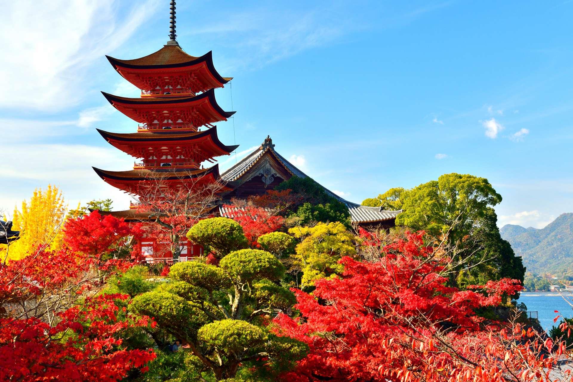 五重塔和紅葉,如畫一般的景緻