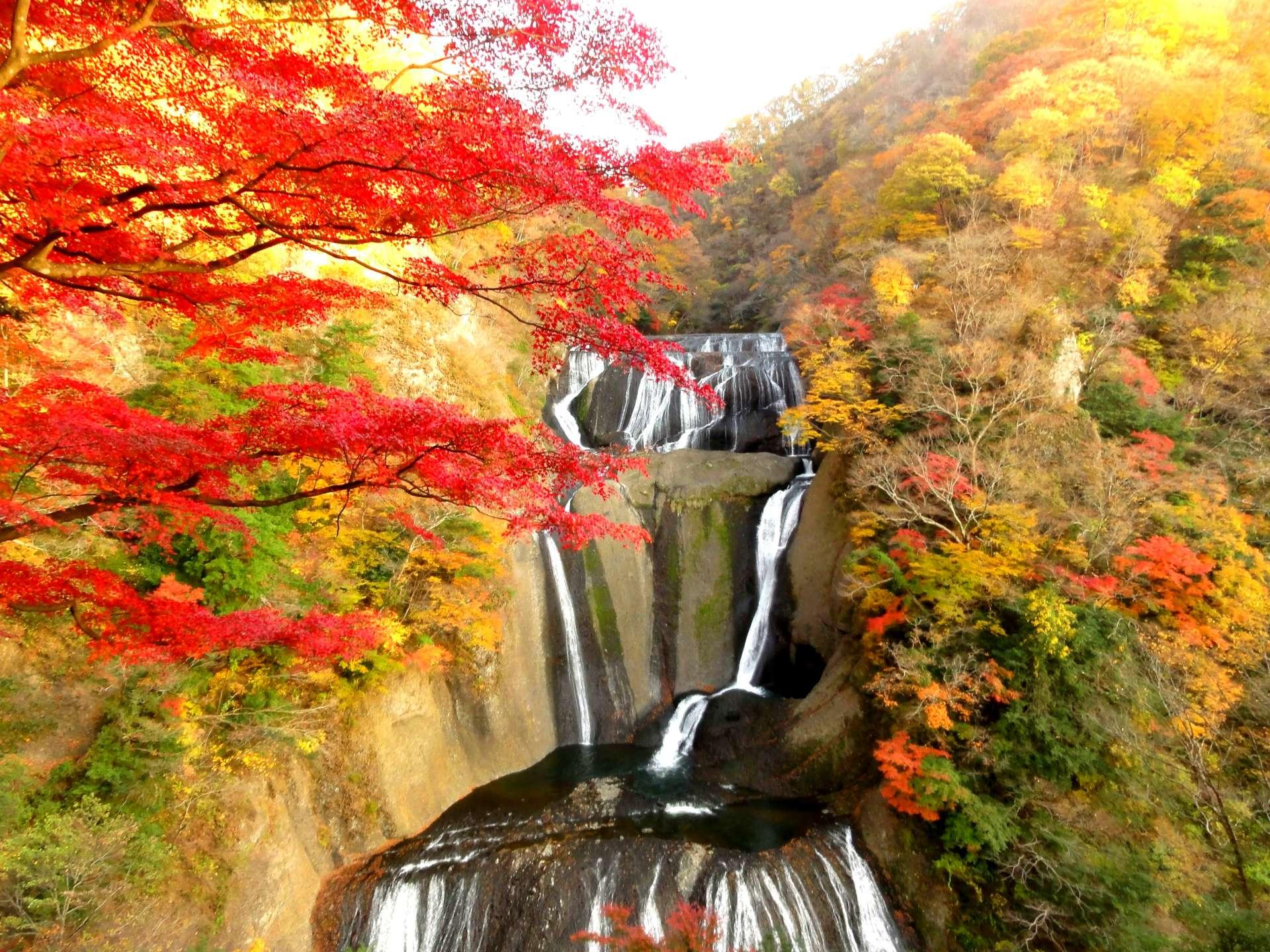 袋田瀑布和紅葉之絕景