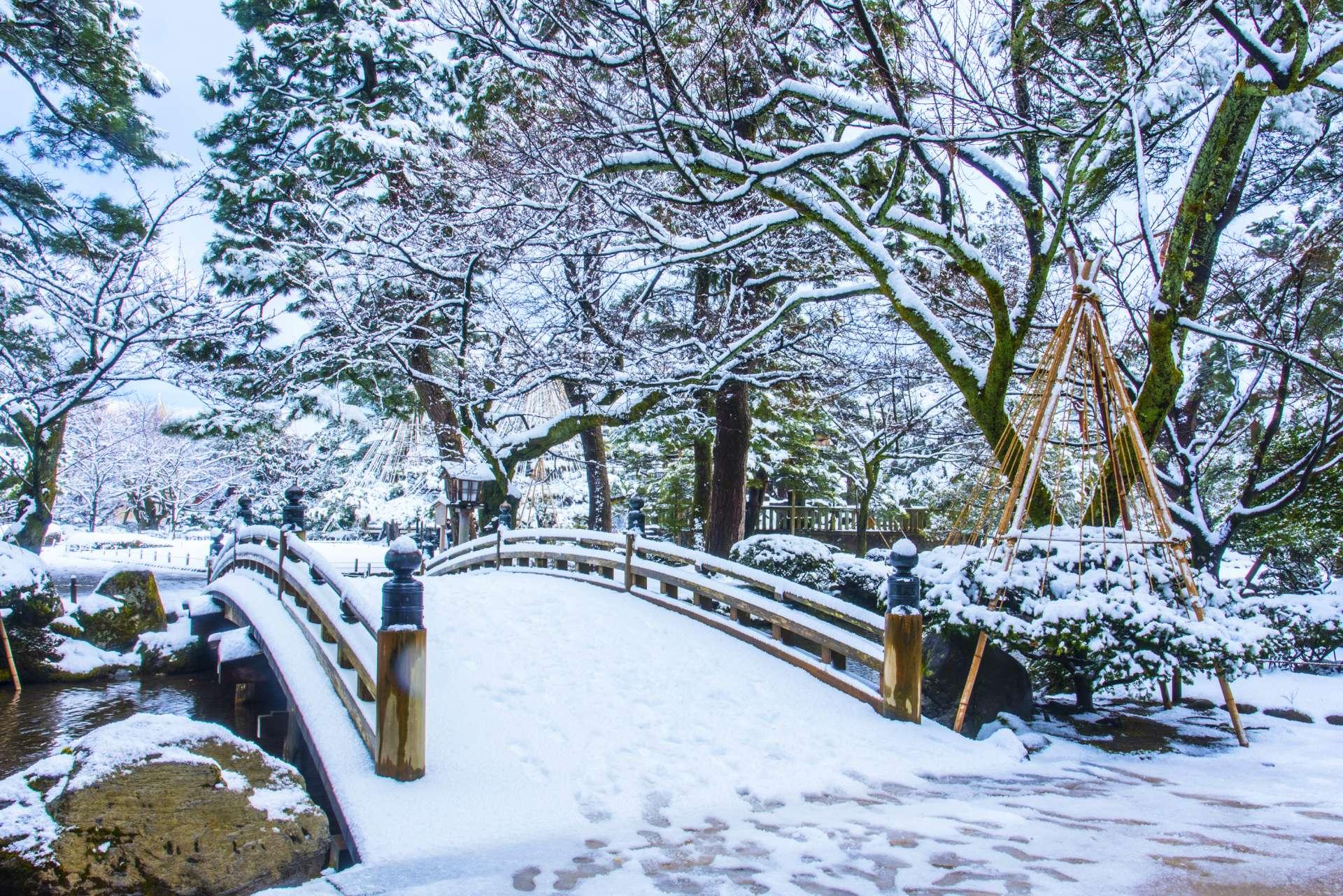 兼六園的雪景