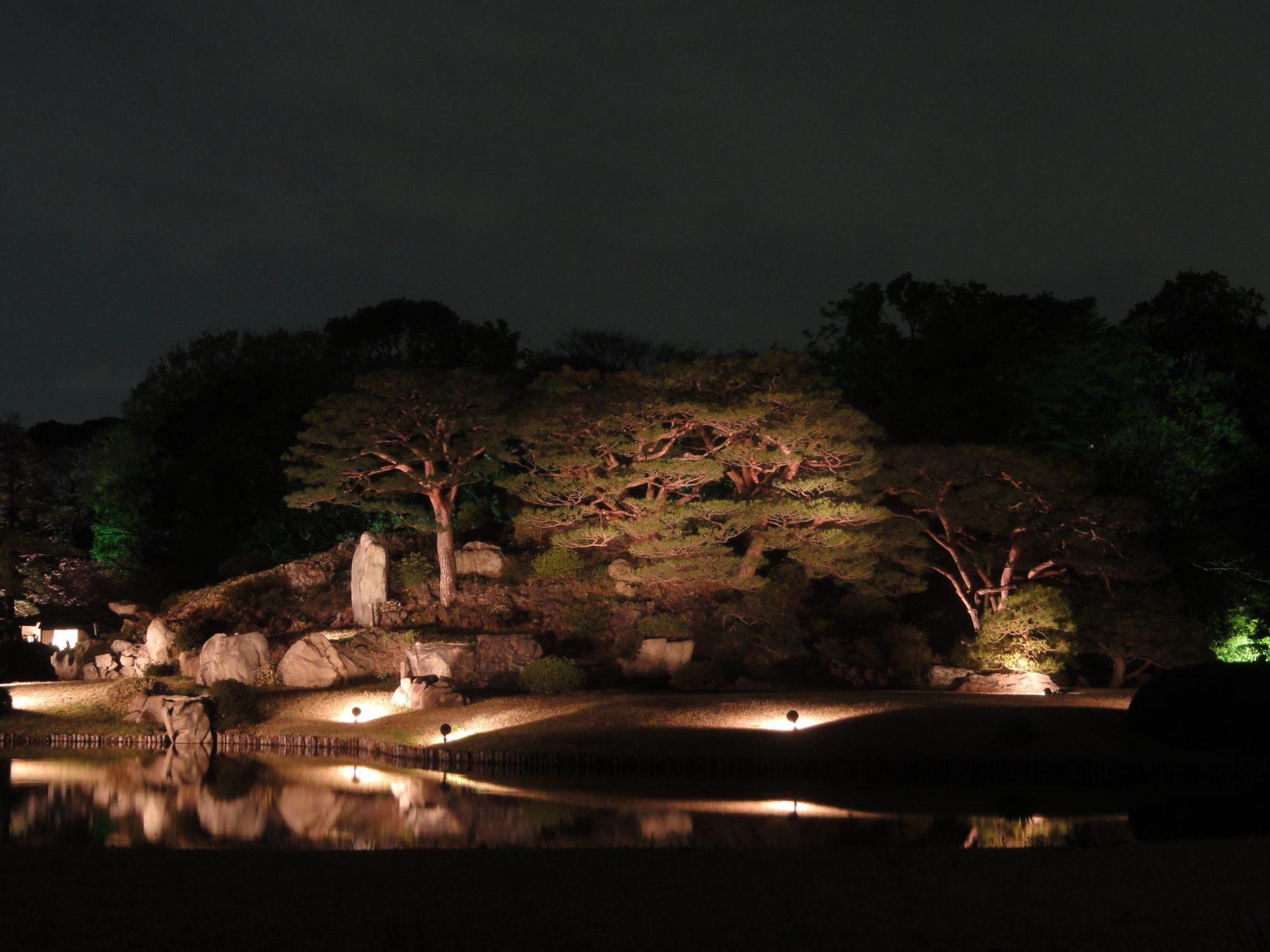 夜晚点灯后的大名庭园