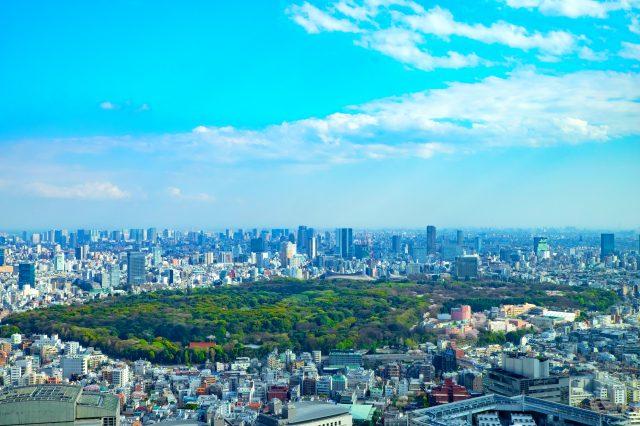 东京都心的绿洲