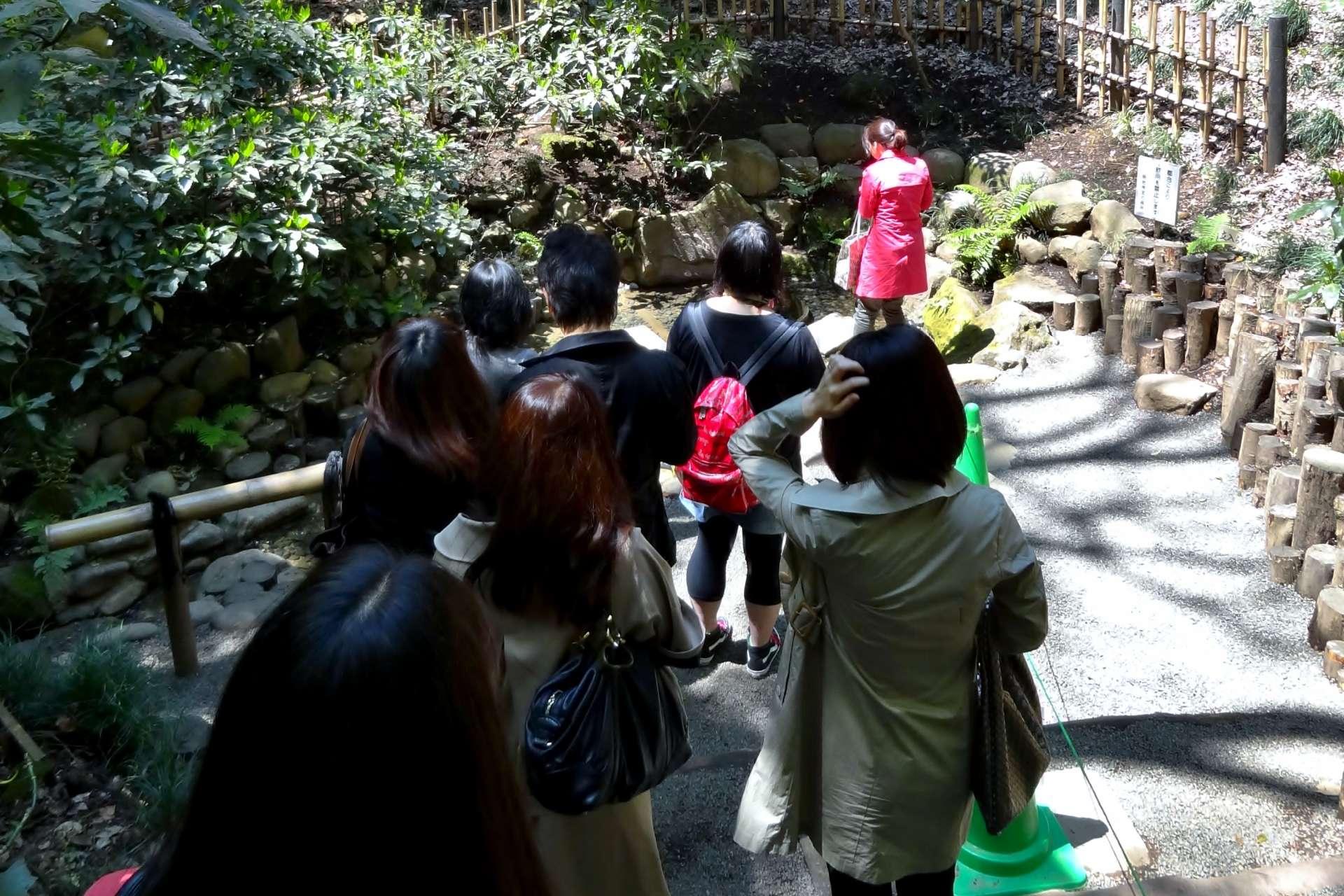排队拜访清正井的游客