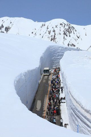 「雪的大谷」