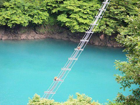 專為了猴子渡過黑部川而搭建的吊橋