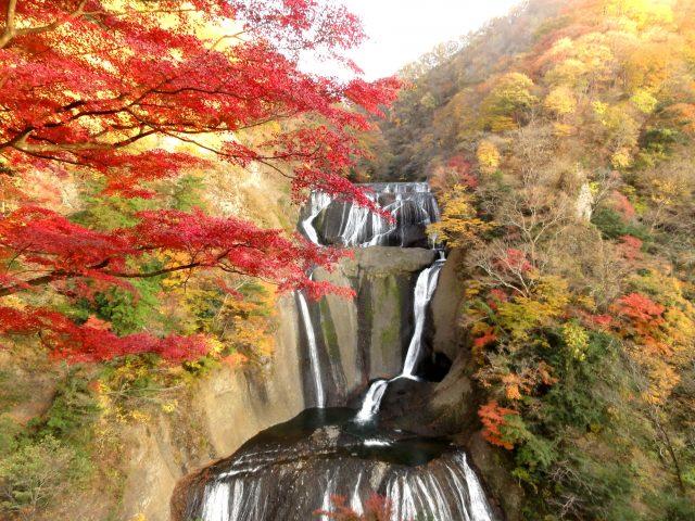 茨城的紅葉名所! 【袋田瀑布】當天返回的行程。