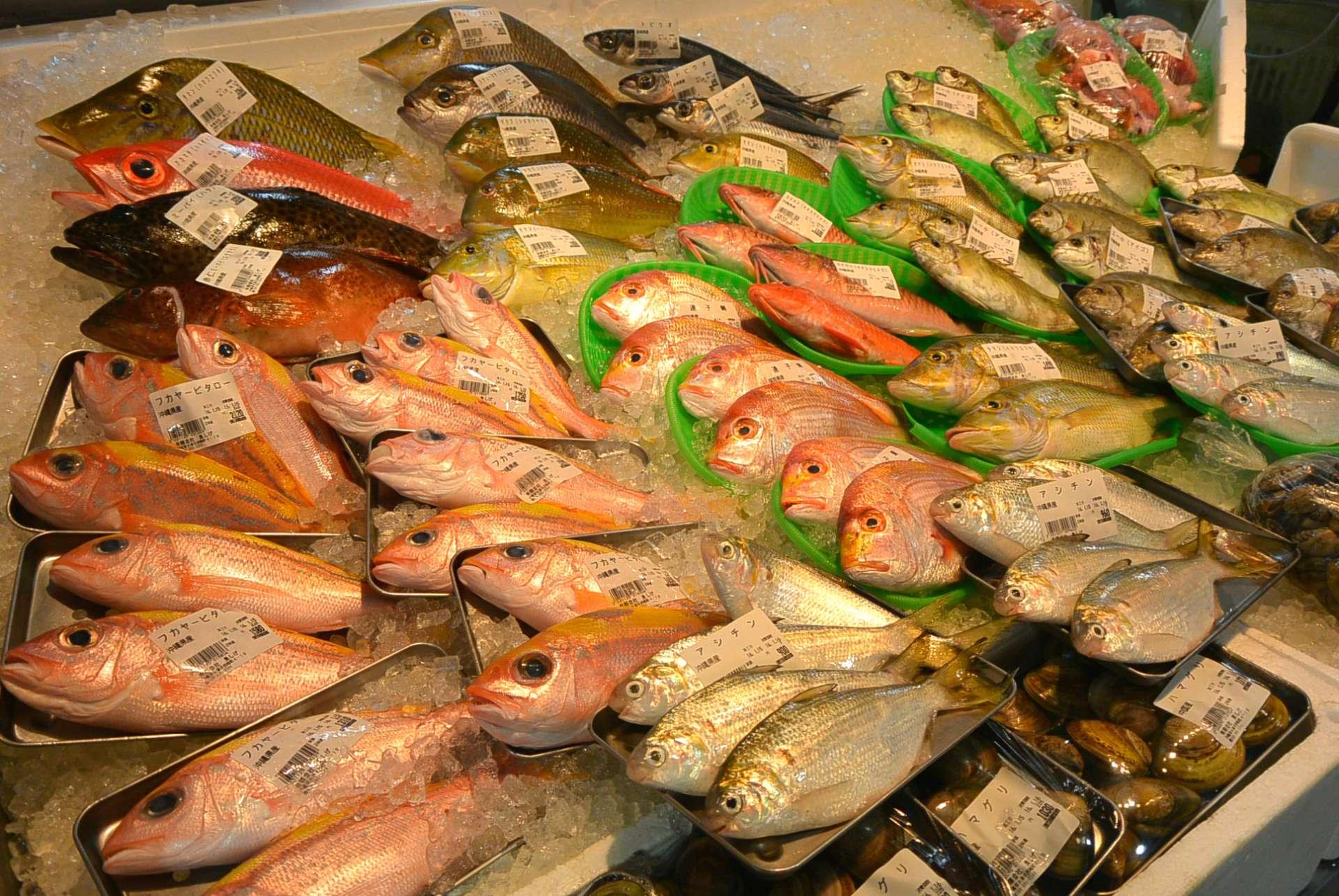 從近海捕撈的海產