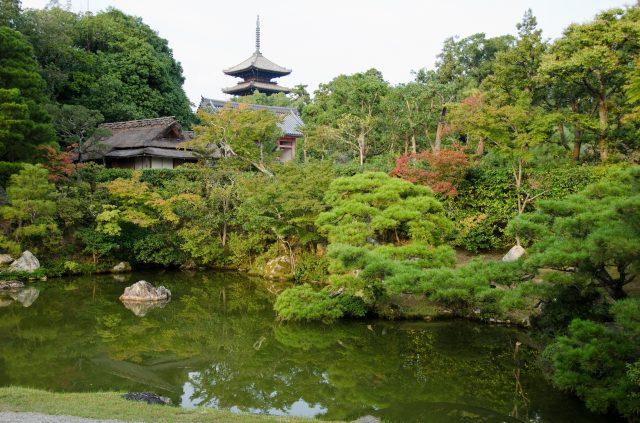 仁和寺優雅的日本庭園