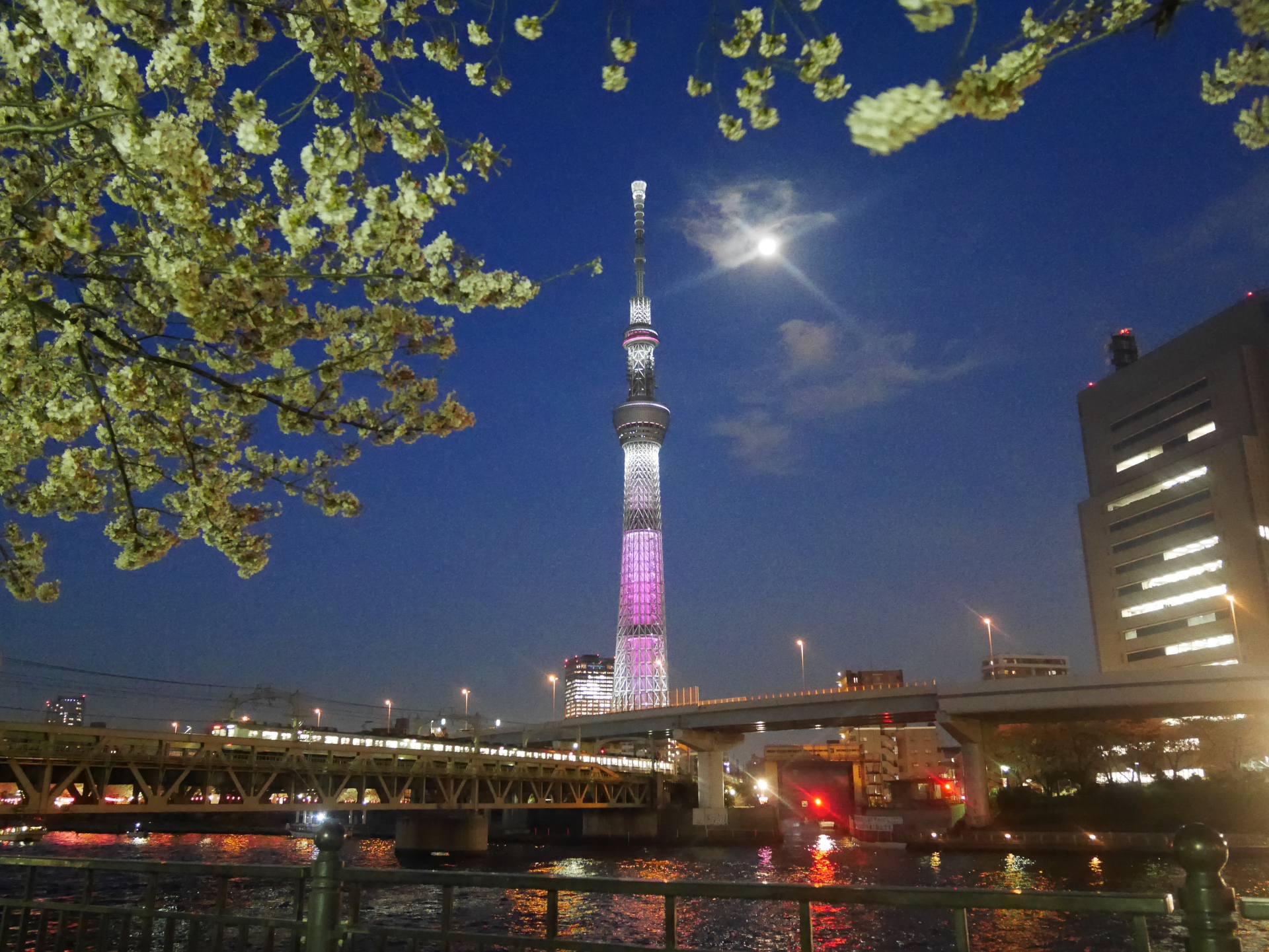 晴空塔的彩色燈飾