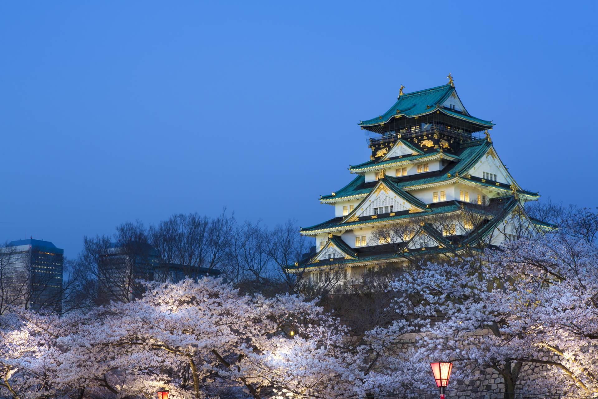 點燈後的大阪城和櫻花