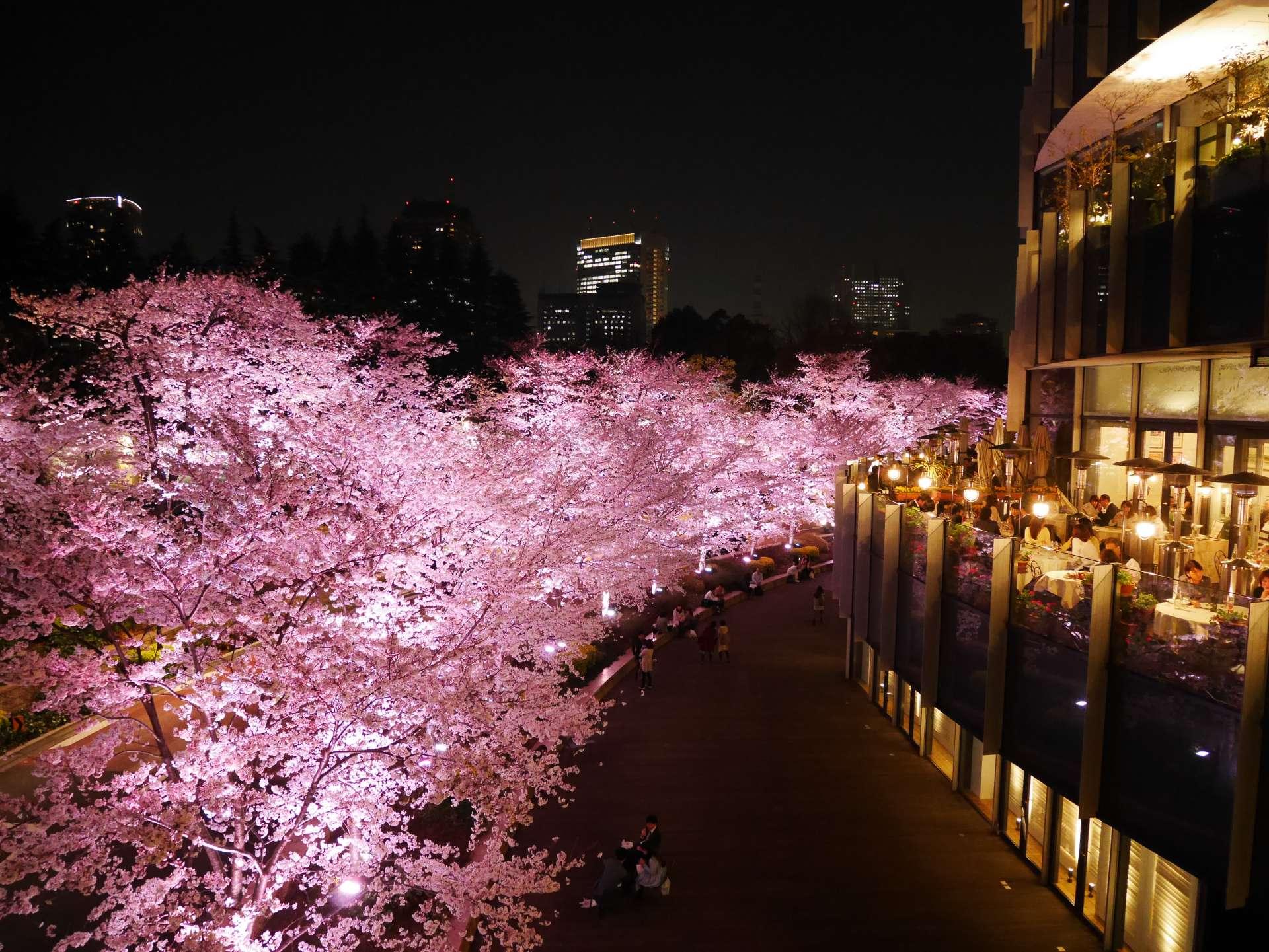 右側開放式陽台的客人能優雅的賞花