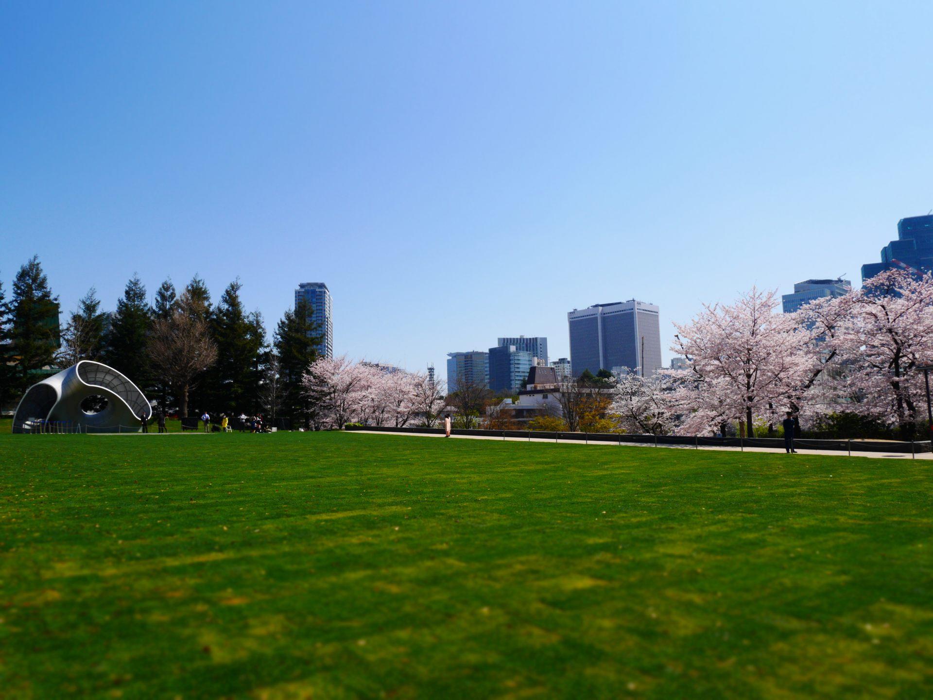 寬大舒適的芝生廣場