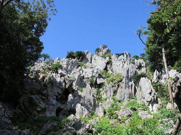 大石林山的山腳處