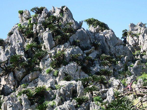 被稱為悟空的奇岩