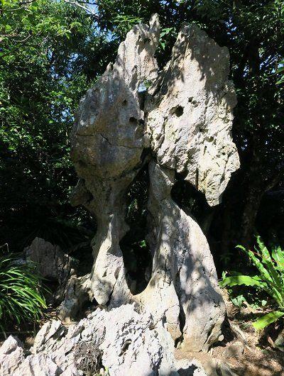 [The stone of reincarnation]