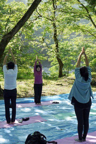 體驗森林瑜伽