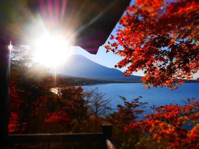 從展望台看富士山