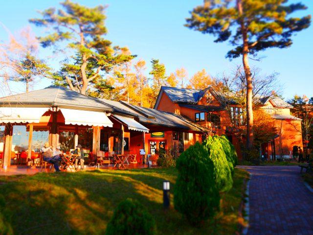 泰迪熊博物館併設的咖啡廳