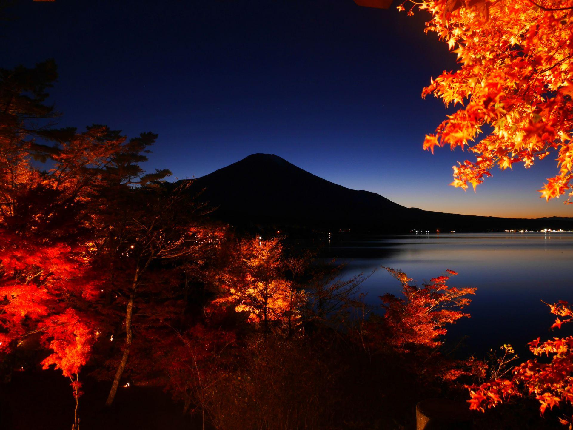 從展望台拍到的夜色下的富士山與紅葉絕景
