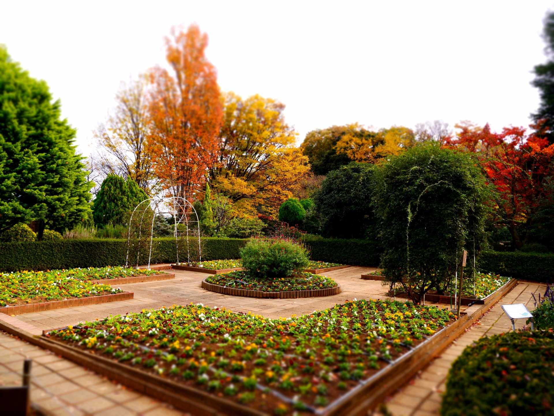 花與綠的振興中心
