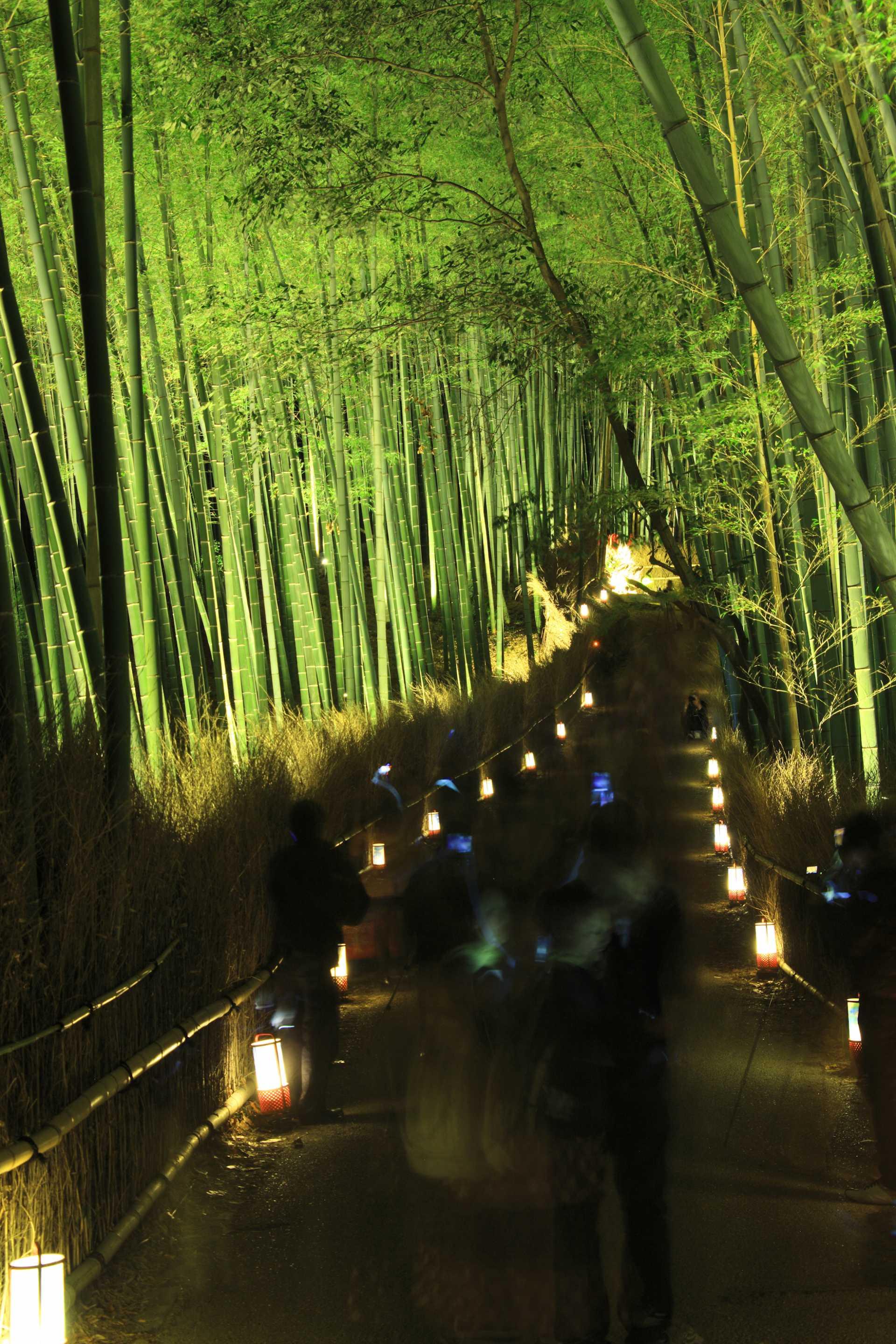 京都‧嵐山花燈路