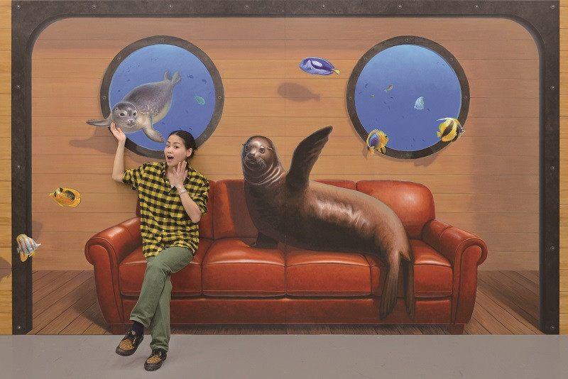 和海獅坐在一起的藝術