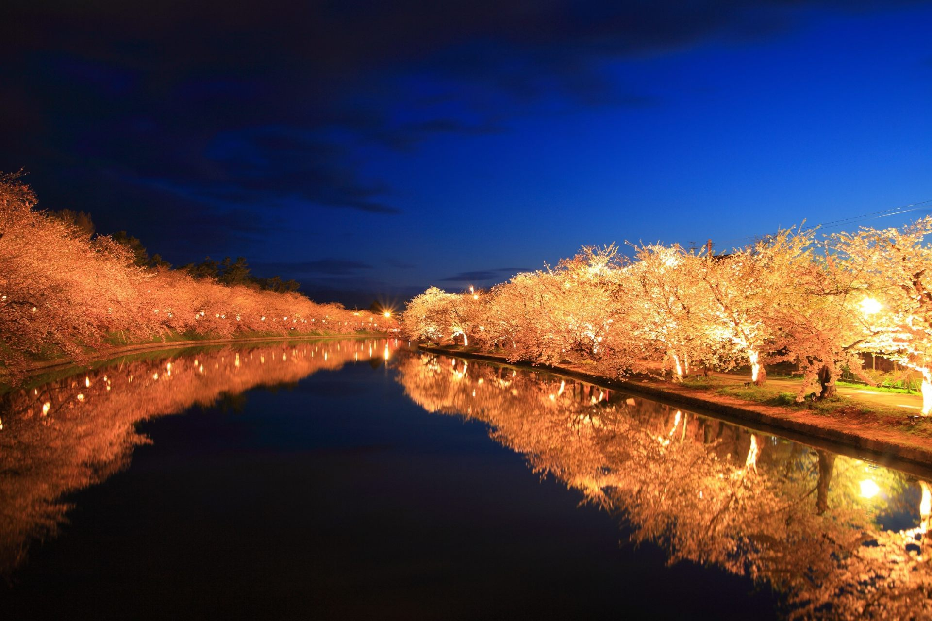 Hirosaki Park, Autumn view of leaves, cherry trees, and moat