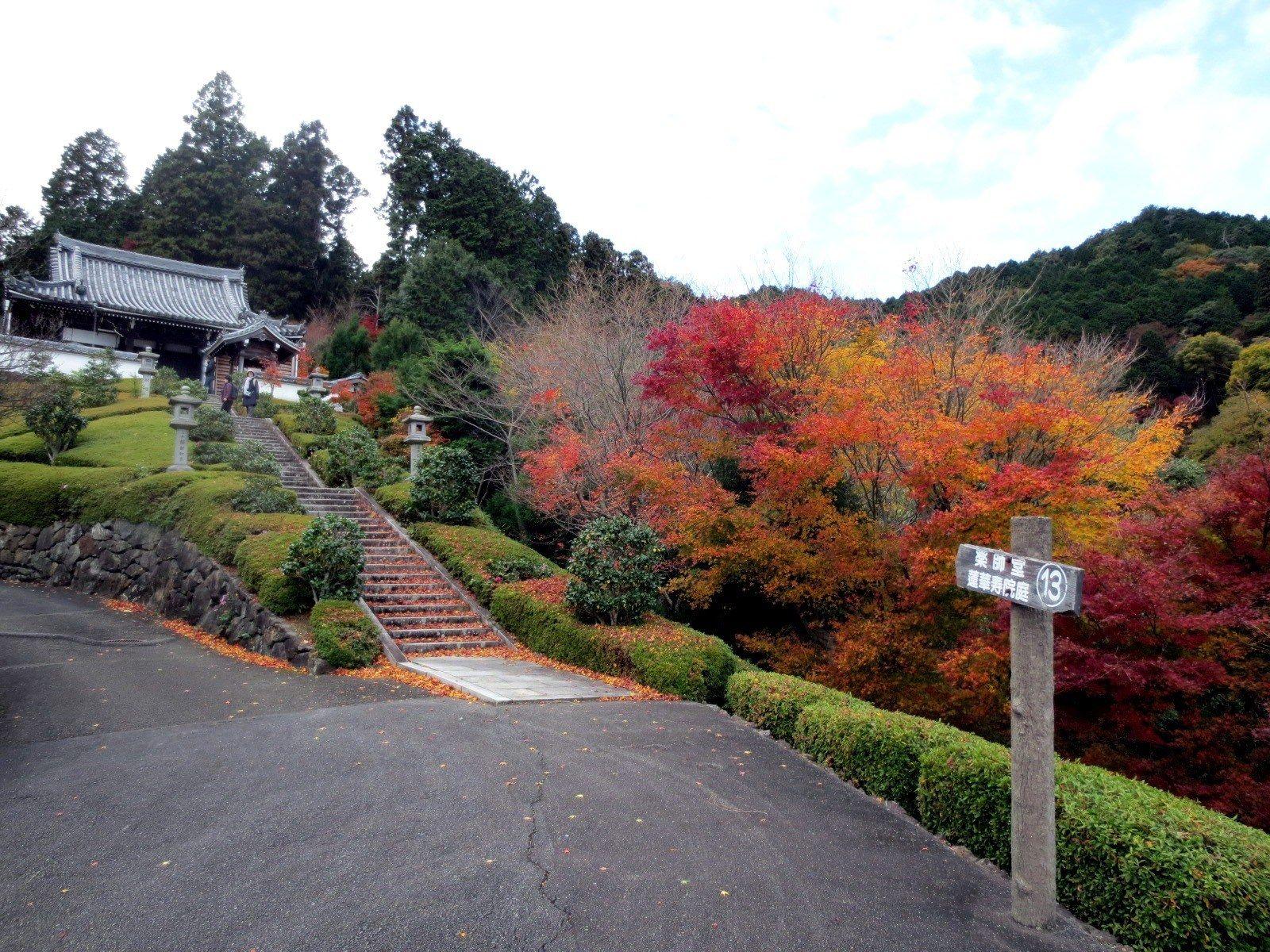 前往药师堂的山间枫叶美景