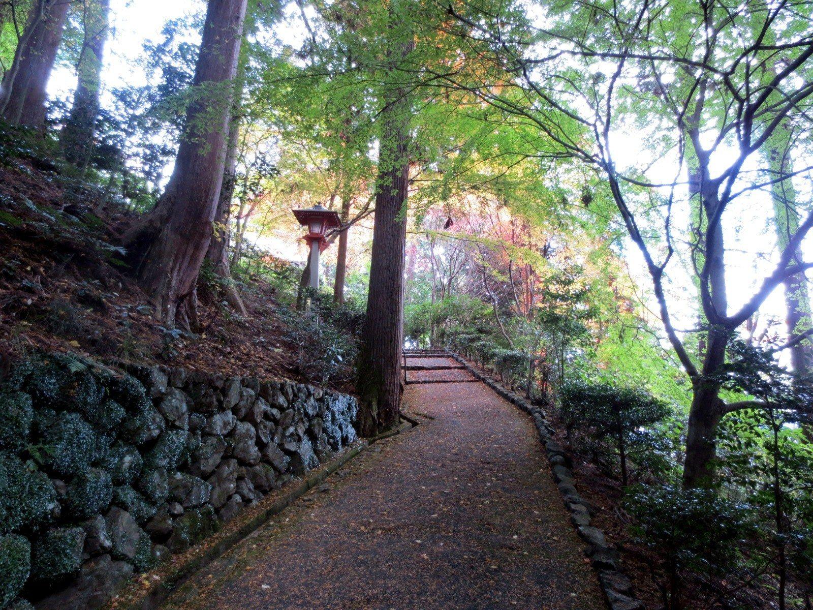 药师堂山路 眺望京都市街和比睿山的好景点