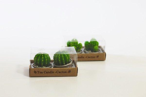 DAISO, cactus candles