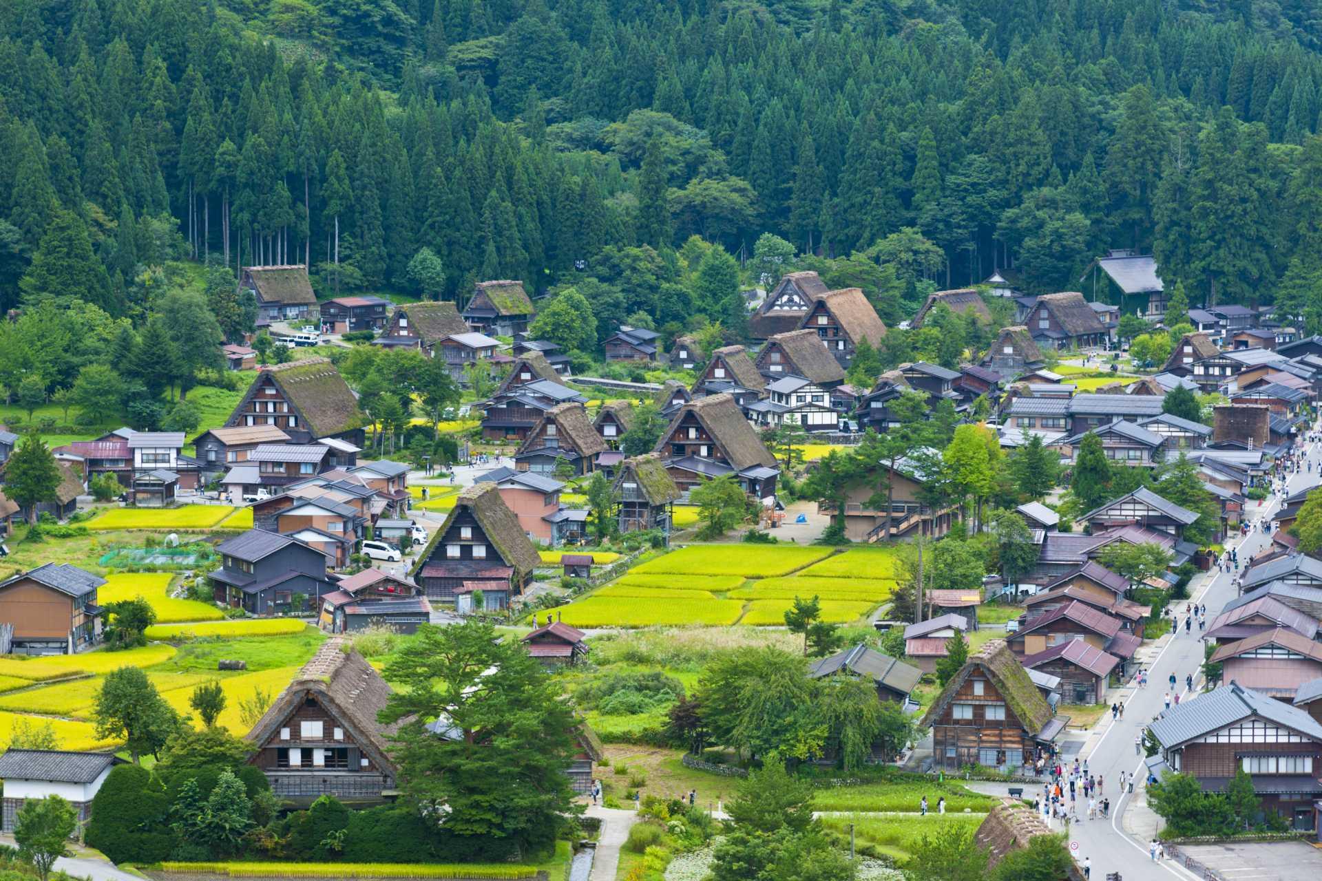 白川乡、岐阜、合掌造聚落、世界遗产、传统建筑群保护区、天守阁瞭望台、大自然