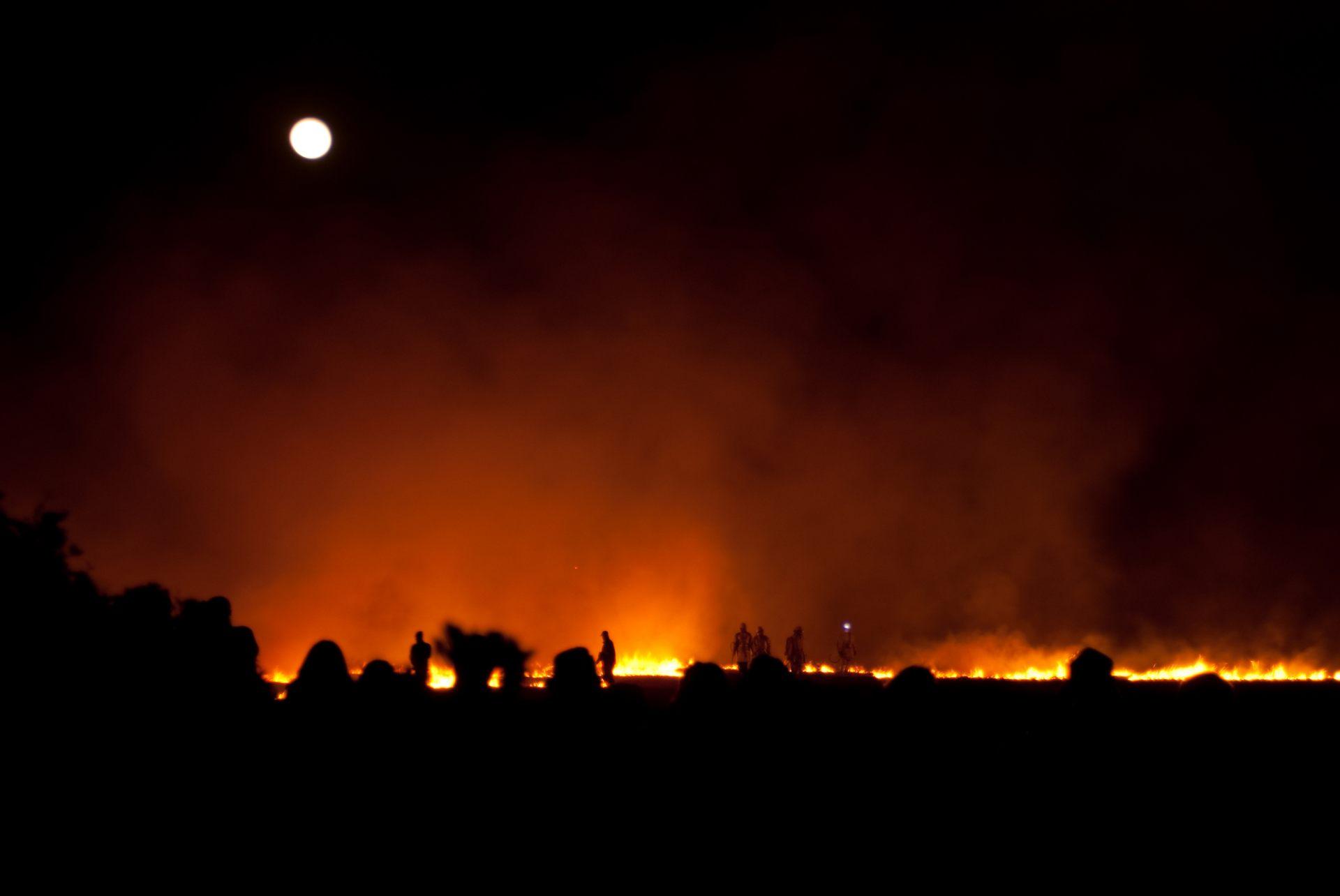 潮岬望楼的燒草原