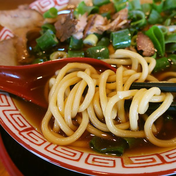 The thick straight noodles were chewy.
