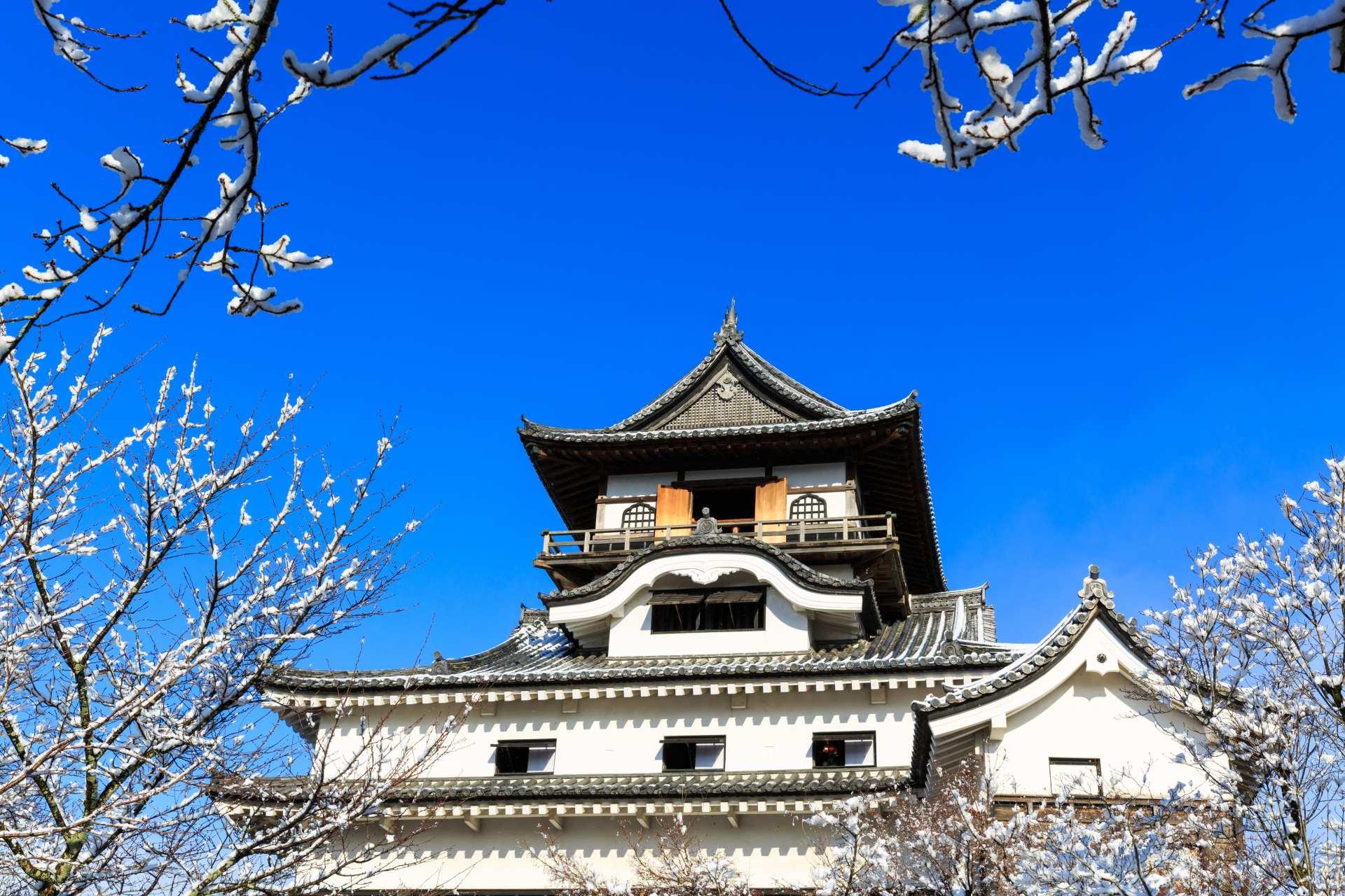 犬山城(爱知县)、国宝