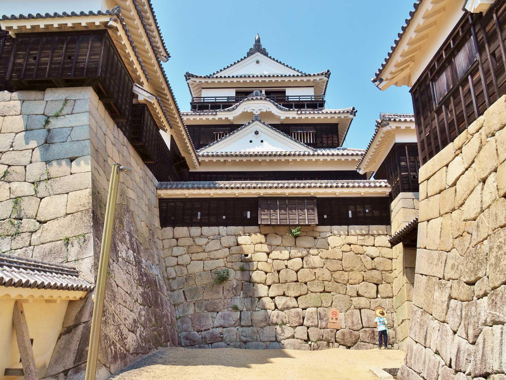 松山城(愛媛縣)、重要文化財