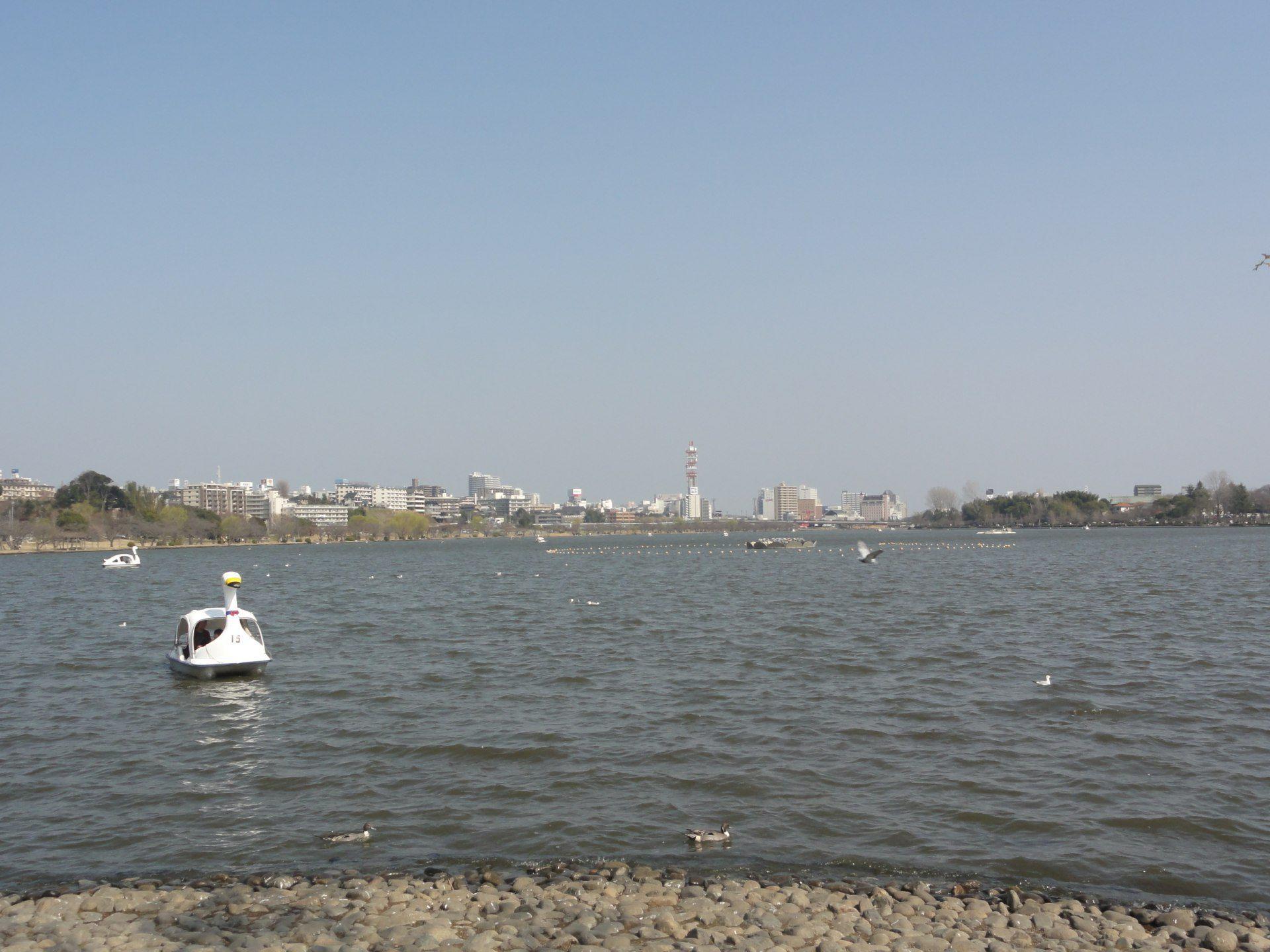 「千波湖」(外圍約3km)