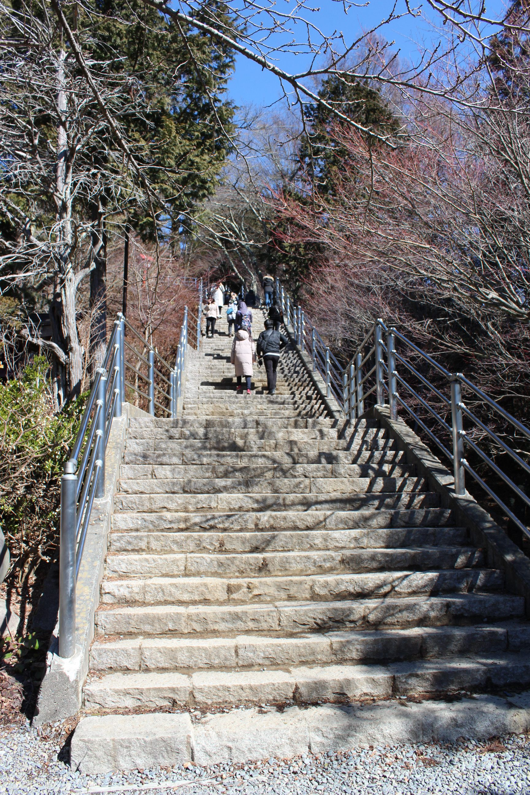398階的台階路:咲くや姫(さくやひめ、sakuyahime)