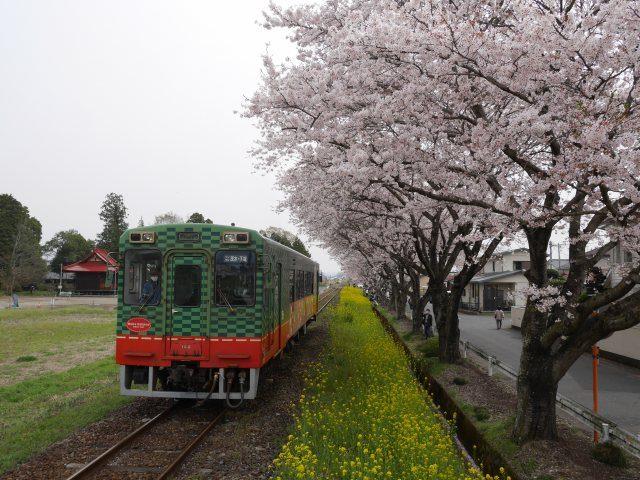 Kita-mooka Station