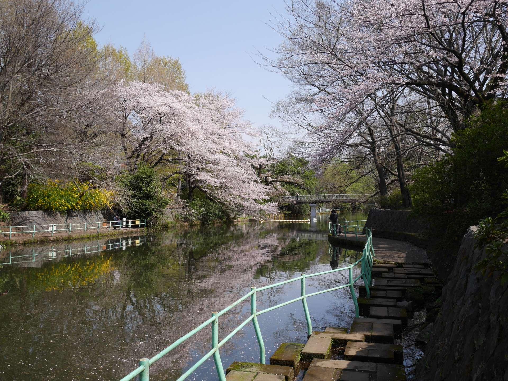 散步武藏關公園