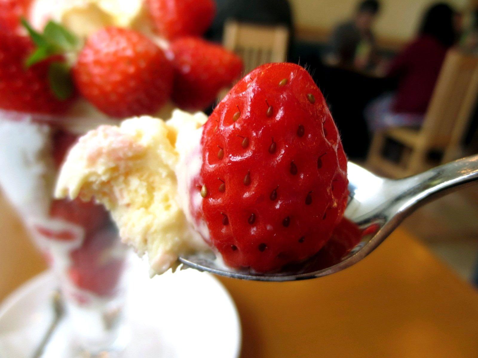 鮮奶味十足的香草冰淇淋