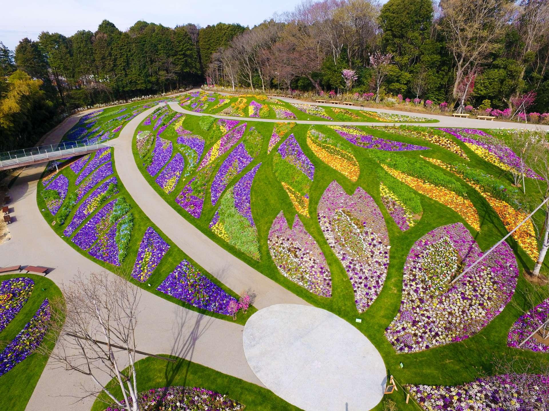 横滨市内最大级的大花坛,用地面积约10000平方米