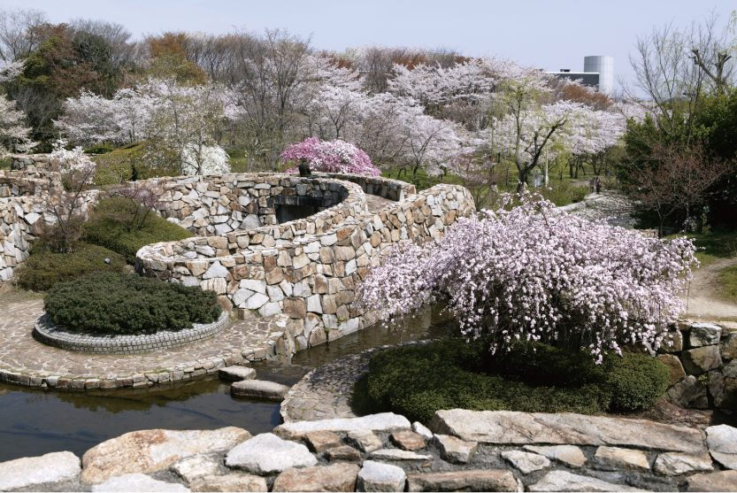 "The ""Cherry Blossom Festival"" is held from late March through early April."