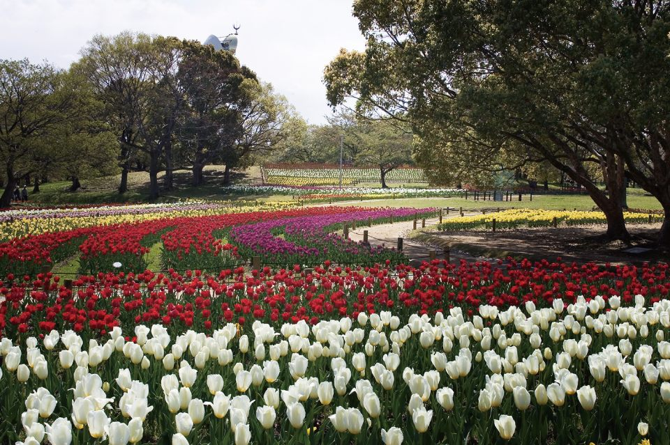 "The ""Tulip Festa"" takes place from early to late April."