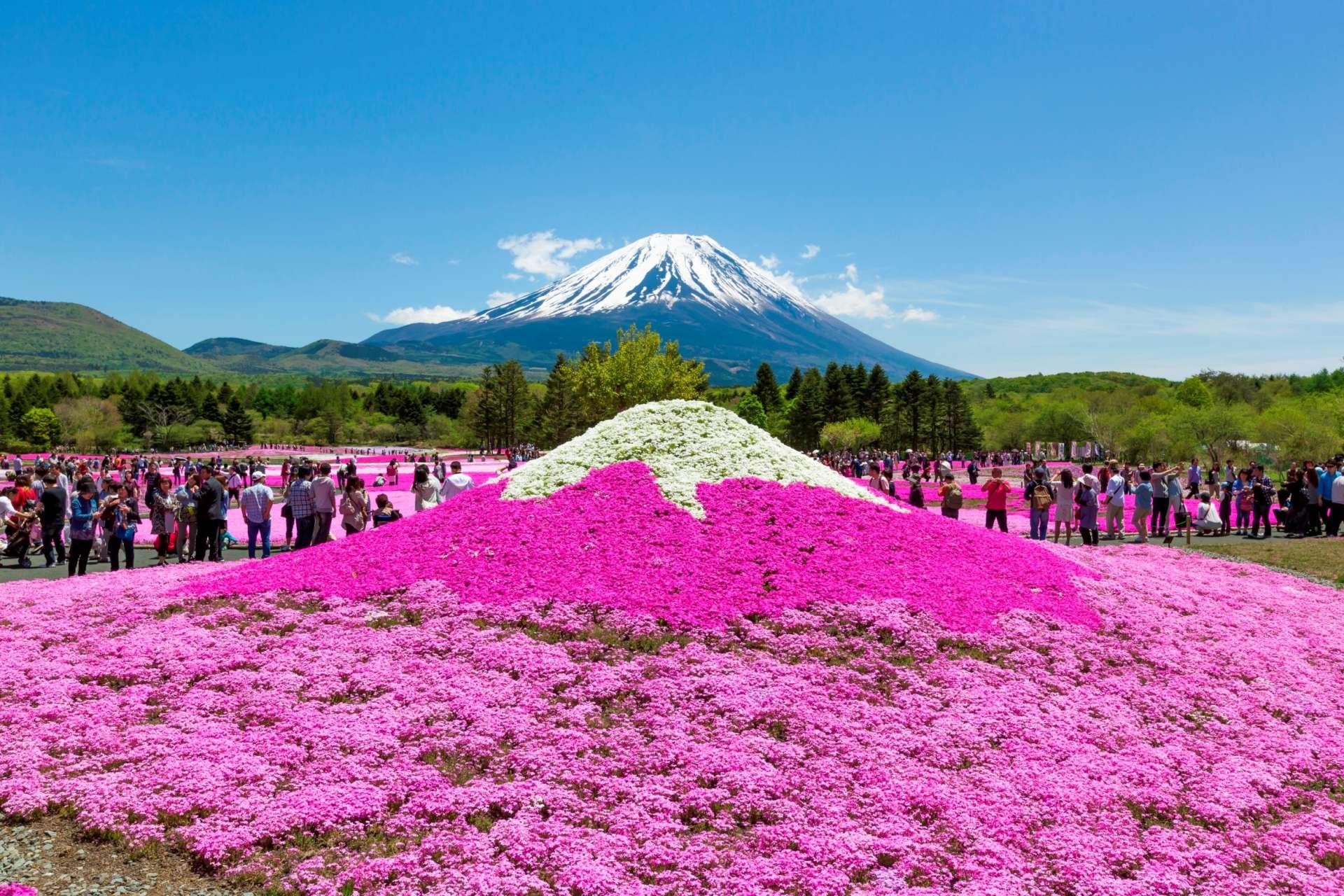 也有仿造富士山模樣的小山丘