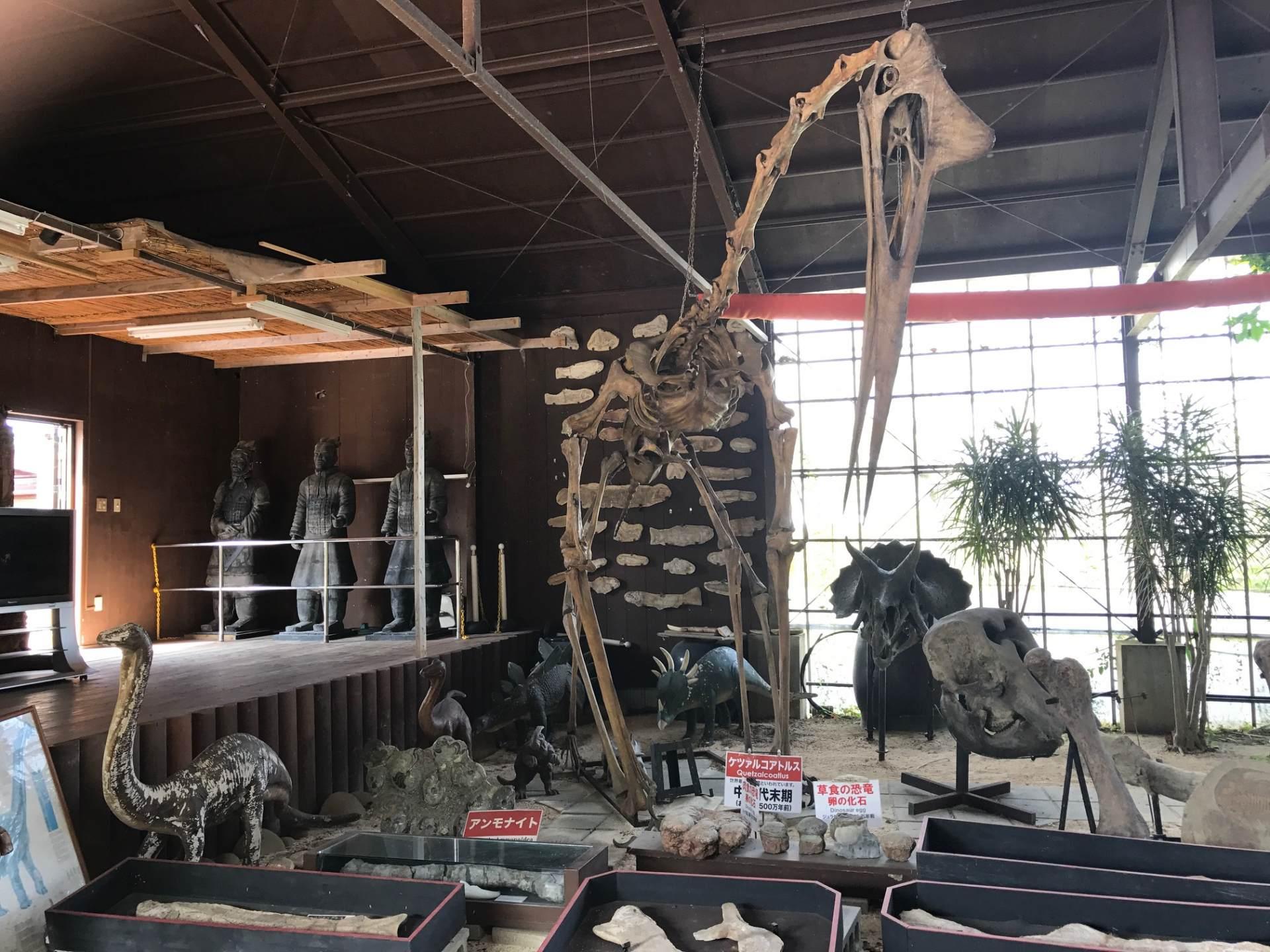 設施內的化石資料館