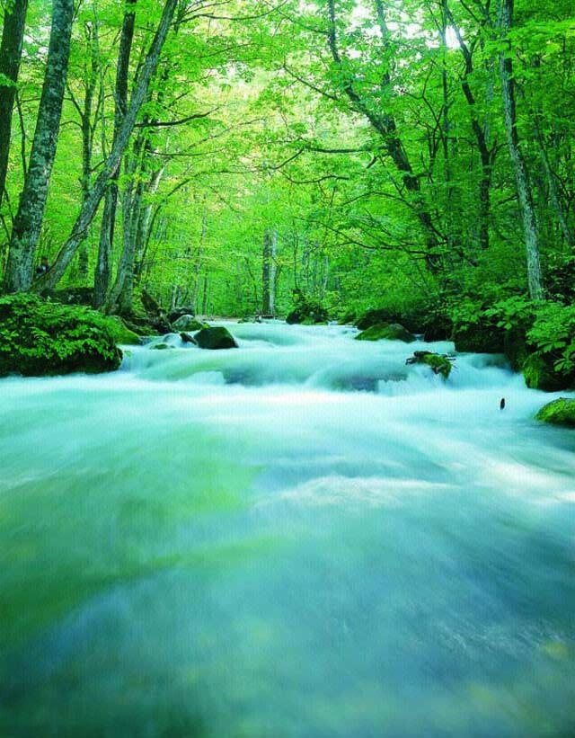 山毛櫸樹林與佈滿苔癬的岩石、澄淨清流交織出美麗的世外桃源。